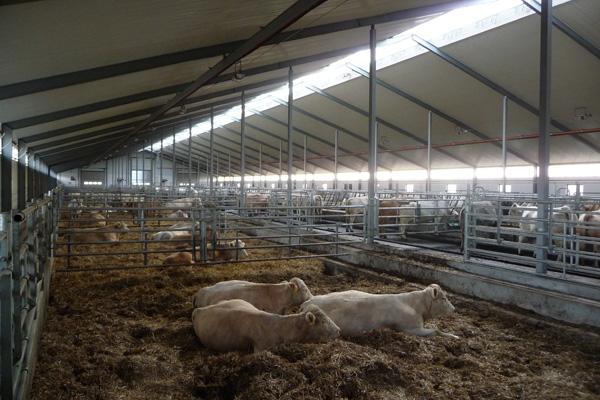 Lantbruksbyggnad, Ystad